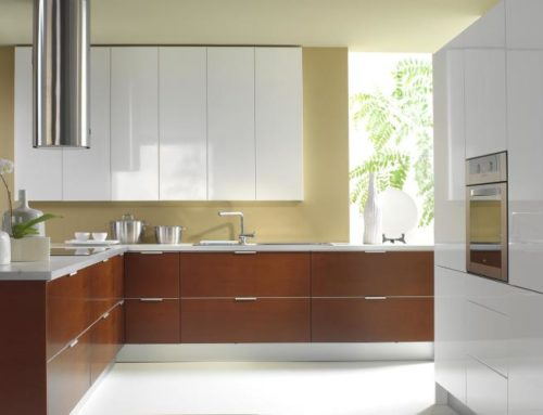 European Kitchen Cabinets